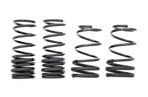 FactionFab F-Spec Performance Lowering Springs